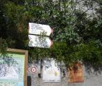Sentiero che scende/sale a Varigotti (Ph: Provincia di Savona)