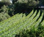 Altopiano delle Manie (Ph: Provincia di Savona)