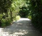 Sentiero (Ph: Provincia di Savona)