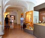 Sale del museo, Museo Archeologico del Finale (Ph: Museo Archeologico del Finale)