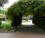 Francesco Gatti Gardens (Ph: Provincia di Savona)