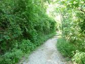 Sentiero Valle Cornei (Ph: Provincia di Savona)