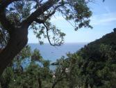 Panorama su Varigotti (Ph: Provincia di Savona)