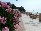 Passeggiata a mare di Finalpia (Ph: Provincia di Savona)