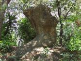 Menhir (Ph: Provincia di Savona)