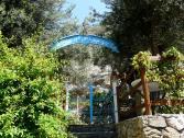 Arabesque (Ph: Provincia di Savona)
