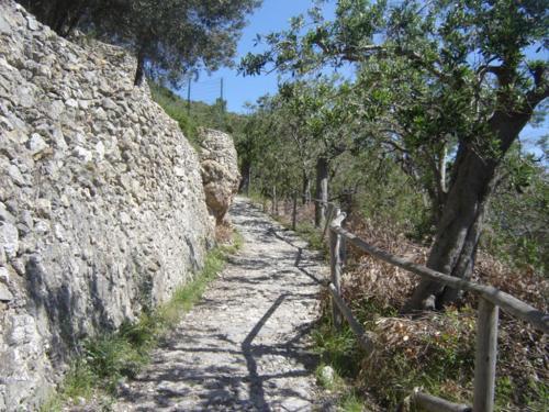 Sentieri (Ph: Provincia di Savona)