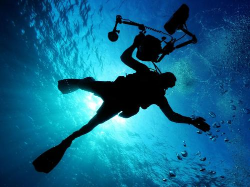 Diving (Ph: Pixabay.com)