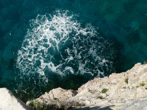 Guide Subacquee e Snorkeling (Ph: Provincia di Savona)